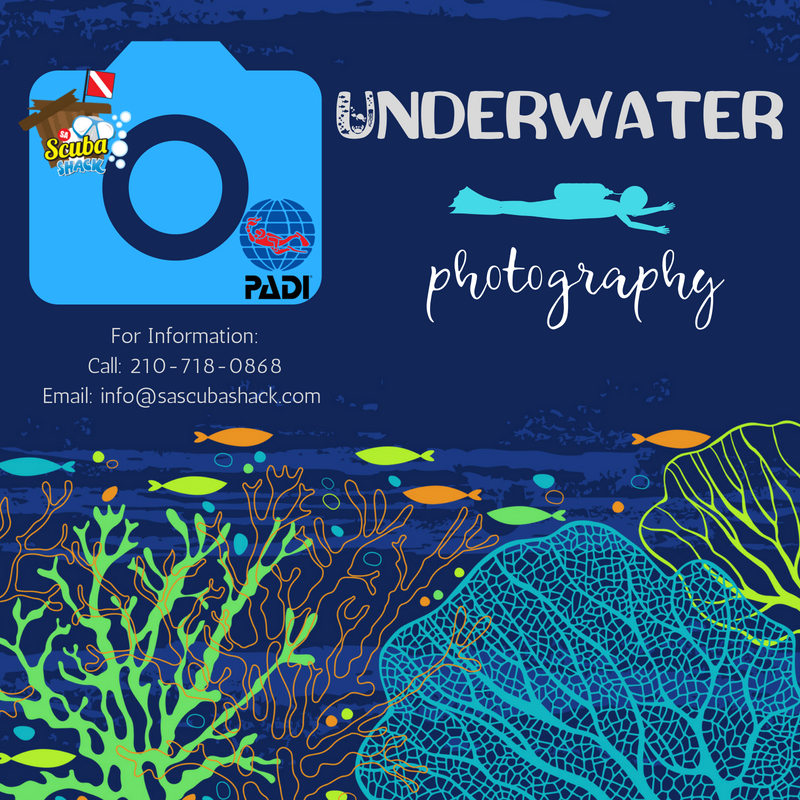 digital underwater photography